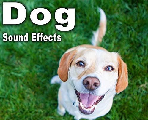 狗狗音效: Dog Sound Effects FLAC